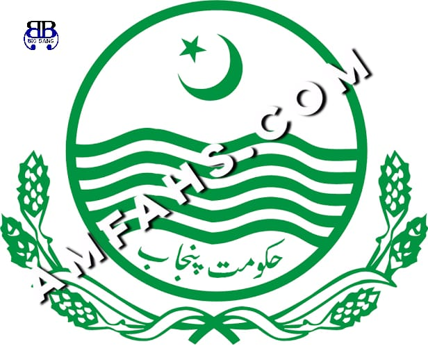 Jobs in Chief Minister's Monitoring Force 2020
